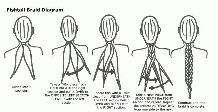 Cool La Braid Kerastase Schematic Wiring Diagrams Amerangerunnerswayorg